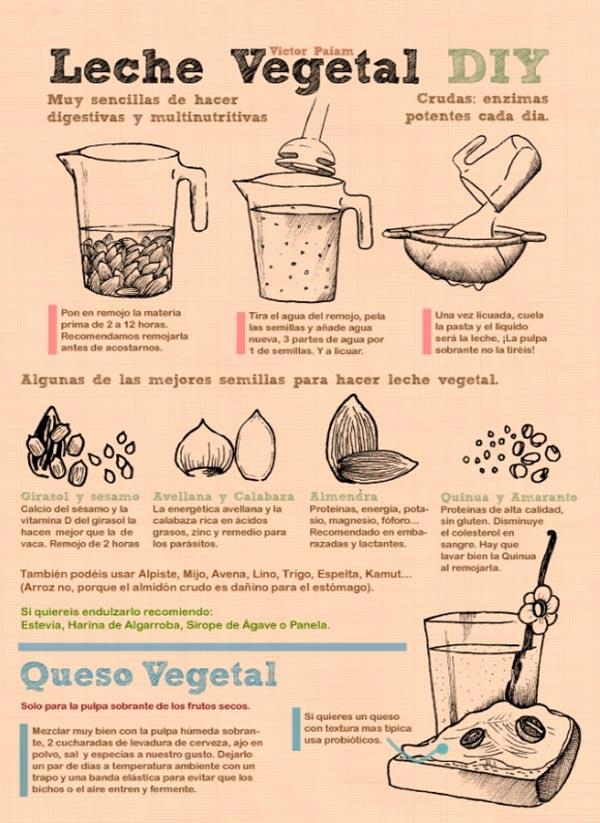 Latte vegetale_immagine intera
