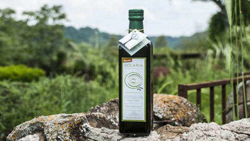 Finalmente è Arrivato l'olio Nuovo! L'Olio Extravergine di Oliva Biodinamico Solaria