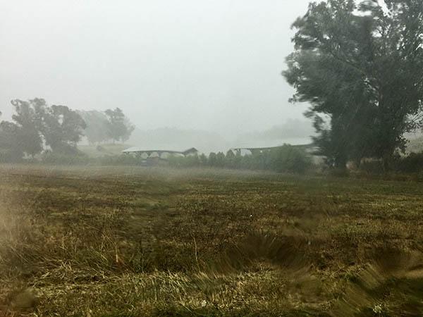 agricola-boccea-agricoltrua-bio-roma-cosa-si-fa-a-settembre