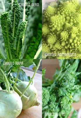 azienda-agricola-boccea-agricoltura-bio-roma-4-cavoli