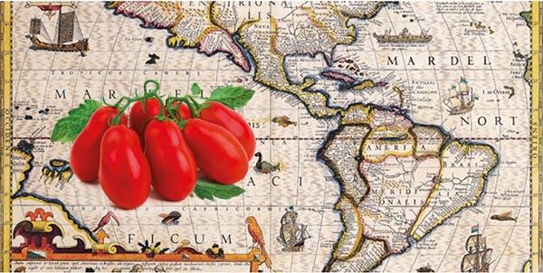Storia del Pomodoro e della sua industria: Profitti, Rischi, Distruzione di Ecomonie