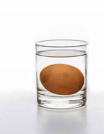 agricola - boccea - agricoltura - bio roma test se uova sono buone fonte corriere della sera