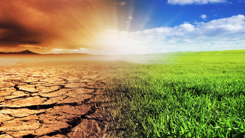 Perchè le Condizioni del Suolo Sono Così Importanti per il Cambiamento Climatico?