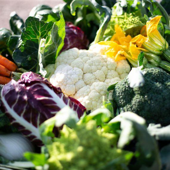 cesta di verdure miste autunnali
