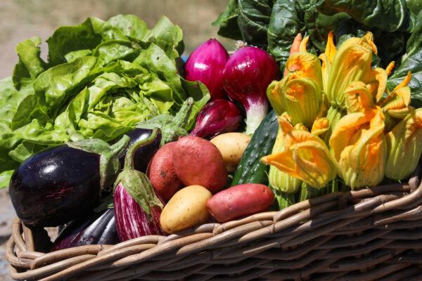 cassetta verdura mista primaverile